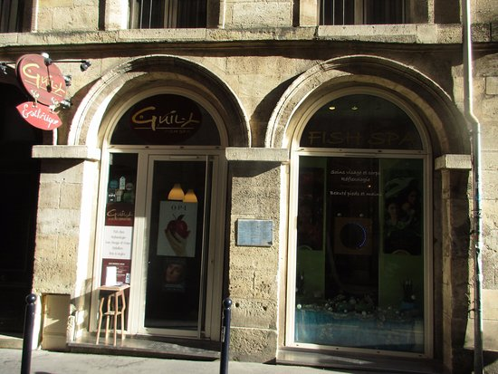 Guily Fish Spa