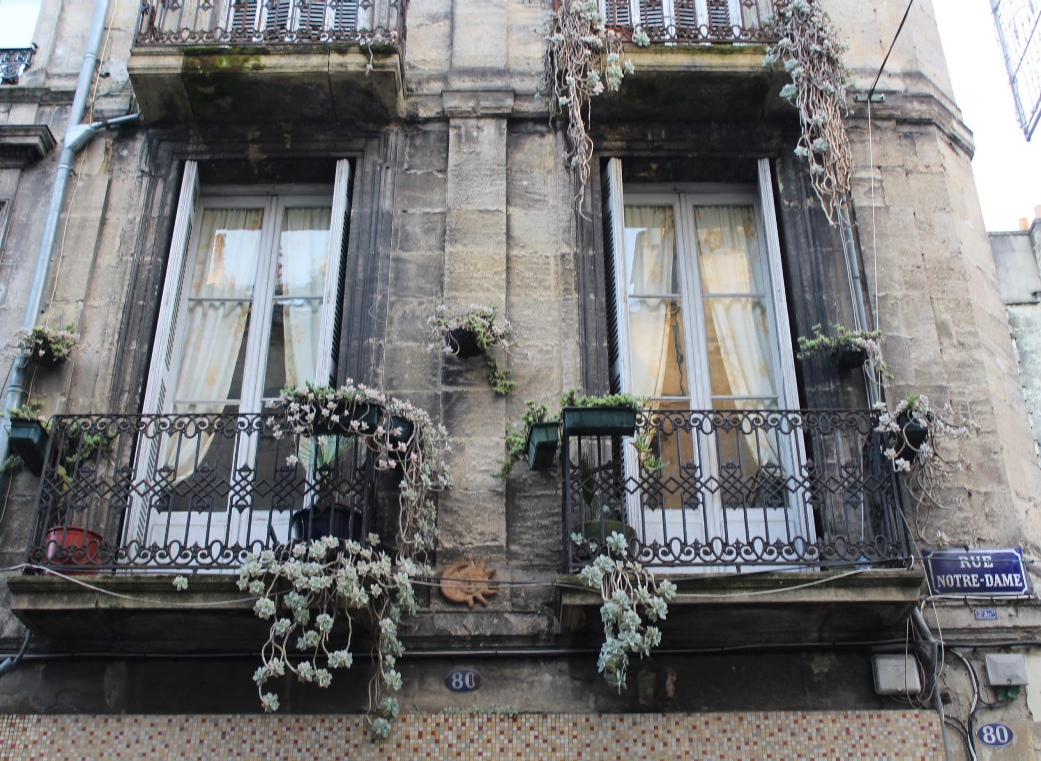 Balcons fleuris 80 rue notre dame