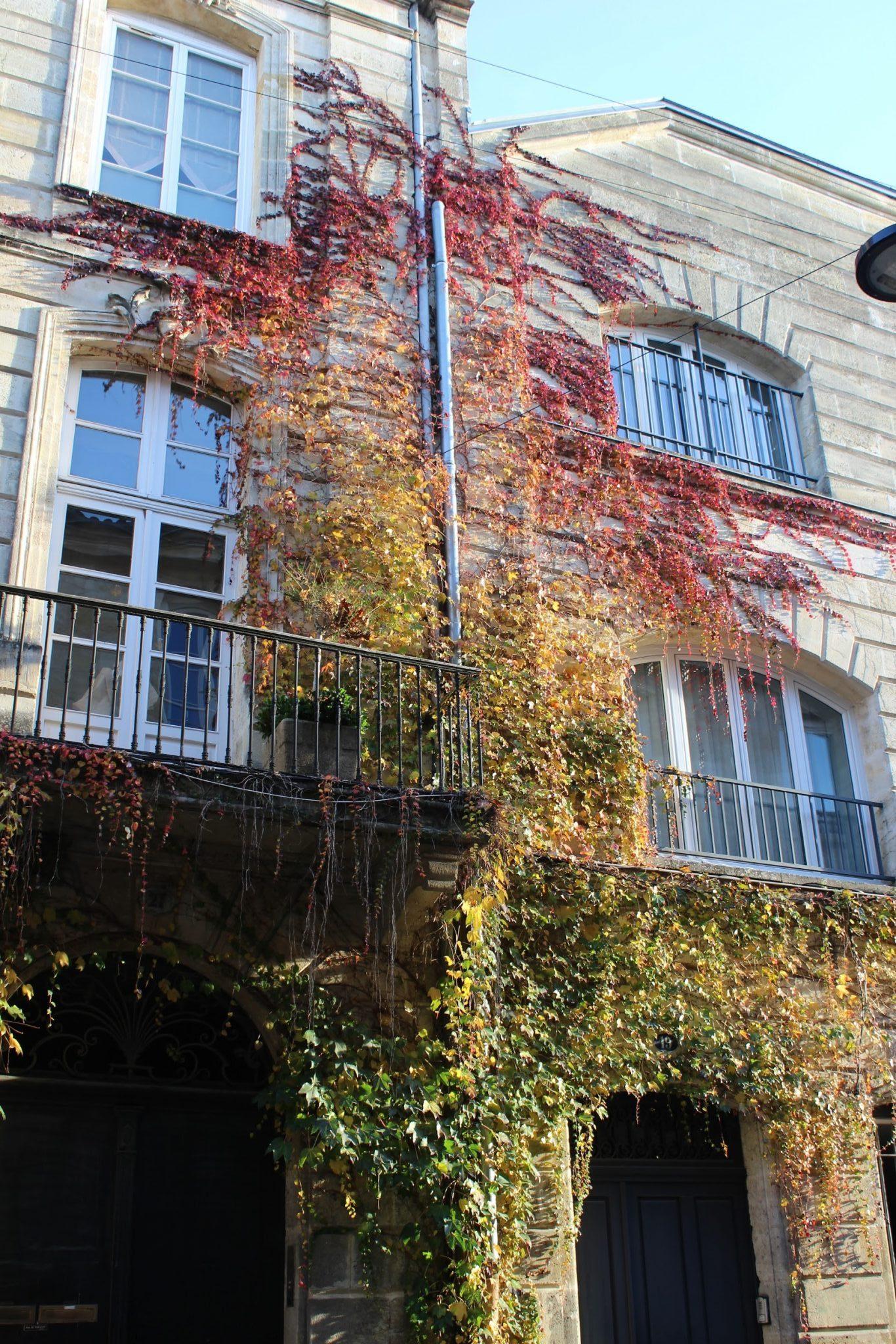 Rue Borie dégradé de couleurs