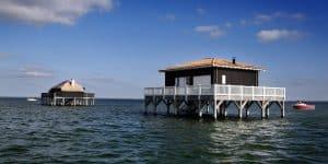 Maison sur pilotis, en plein mer sur l'île aux oiseaux